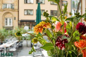 Sommerblumen am Eingang
