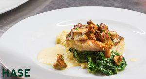 Hase Restaurant - Fischgericht-mit-pfifferlingen